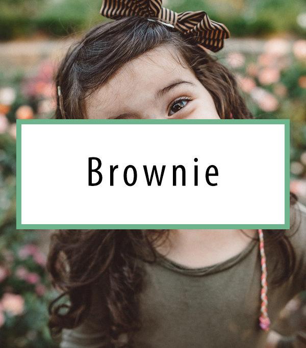 Preset-Verkaufsbild-Brownie