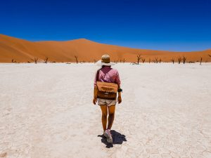 Peak-Design-Everyday-Messenger-desert