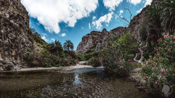 Kreta Natur - Preveli Beach - 2