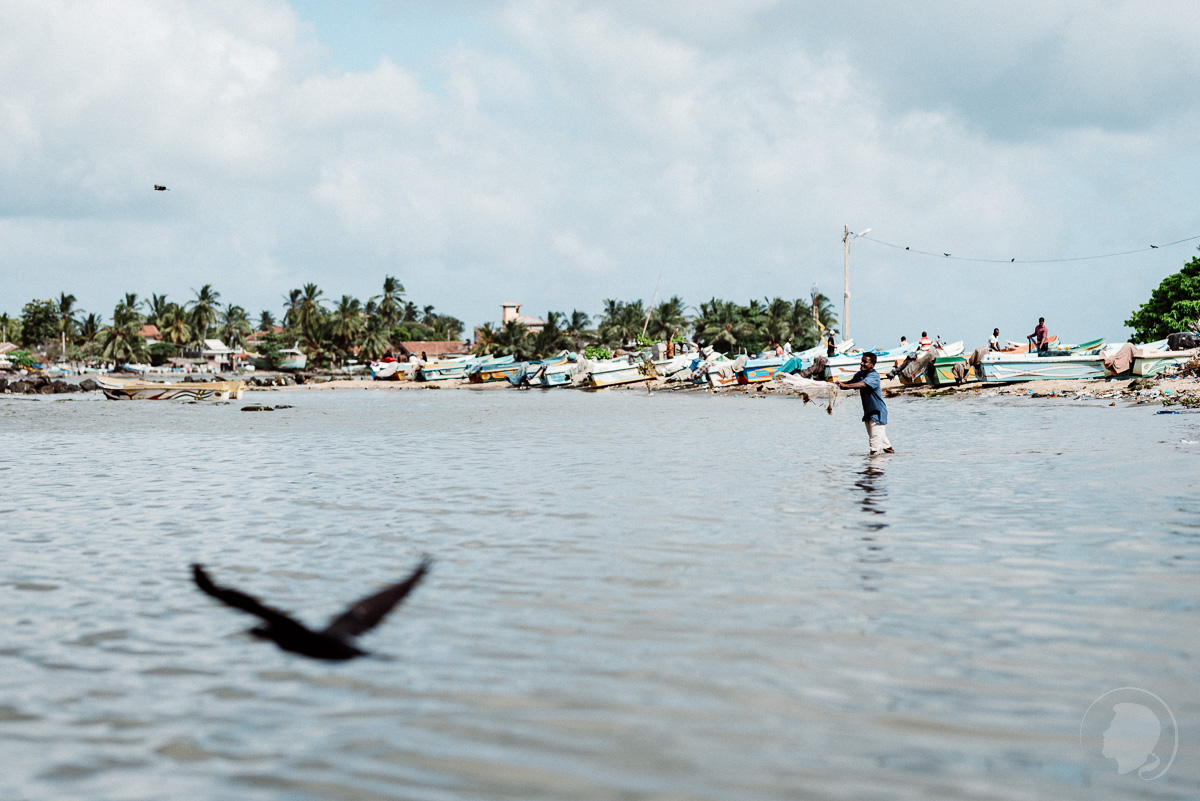 Auf Fisch fang - Negombo Sri Lanka