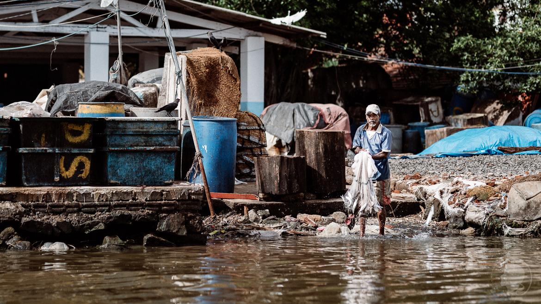 Frisch erbeutet - Negombo Sri Lanka
