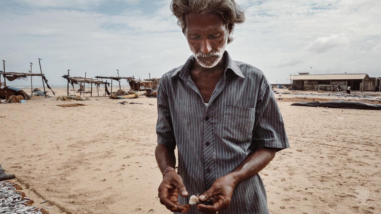Negombo Fischerhafen Sri Lanka