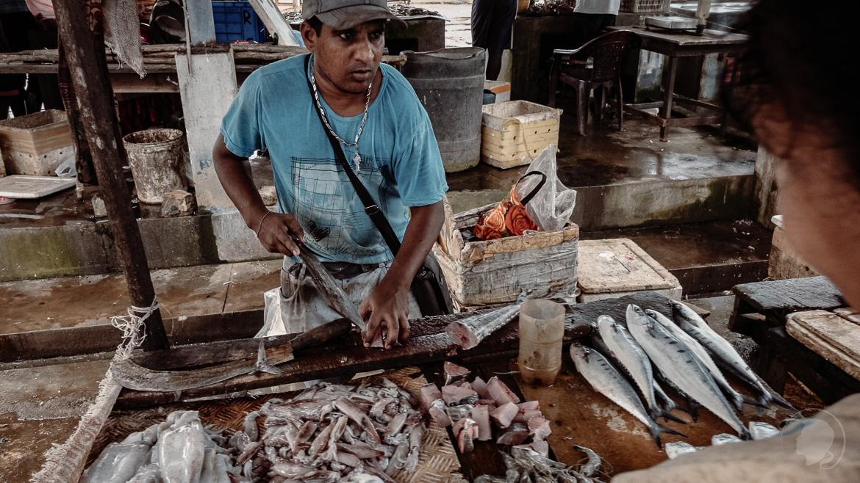 Negombo Fischmarkt - Mann verkauft Fische