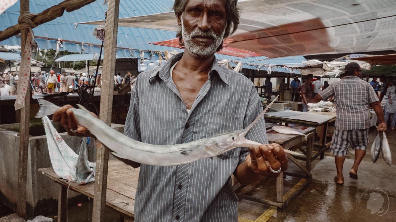Negombo Fischmarkt Sri Lanka