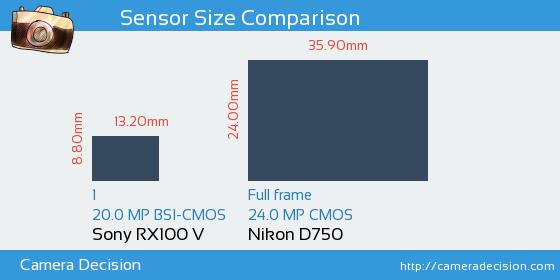 Sony RX100V vs Nikon D750 Sensor Vergleich