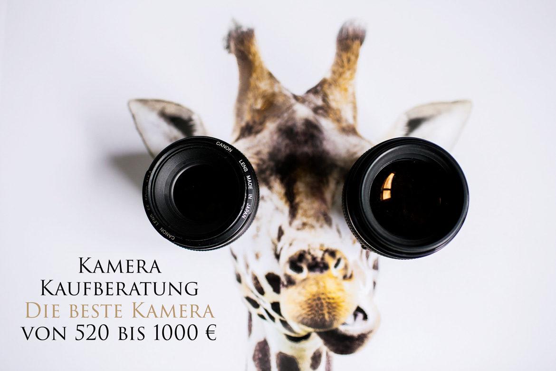 Kamera Kaufberatung die Beste Kamera von 520 bis 1000 EUR Thumbnail