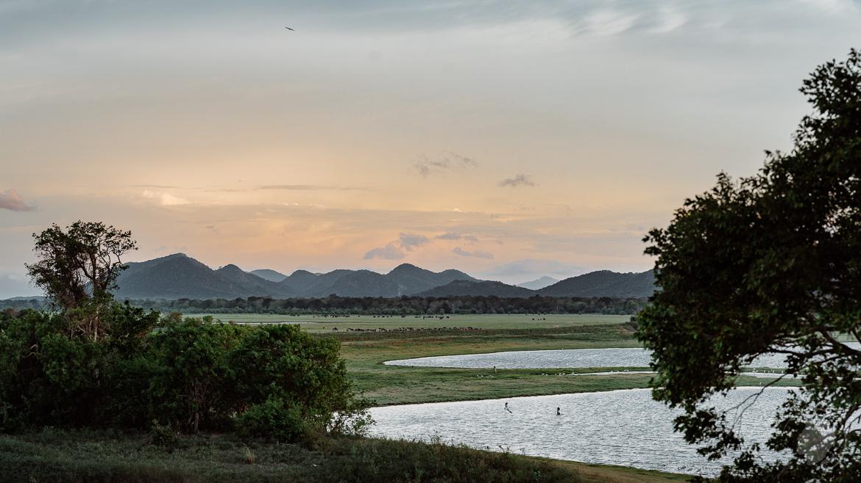 Minneriya Sri Lanka Landschaft