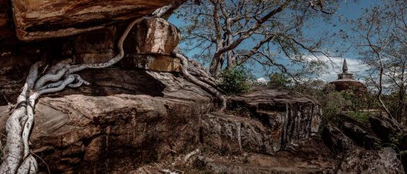 polonnaruwa-1