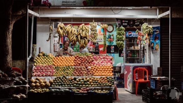Indien Kerala – Fotografien aus Kochi, Alappuzha und Idukki