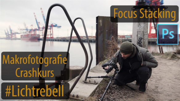 Focus-Stacking-Makrofotografie-Nahaufnahme-Thumbnail